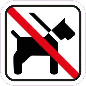 dyrforbudt