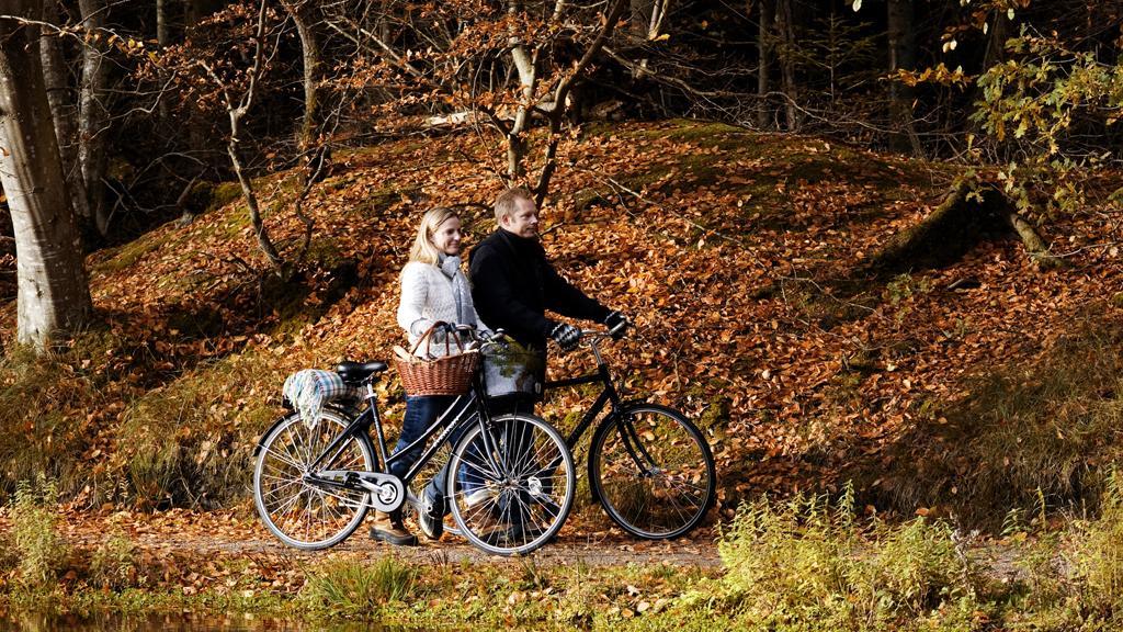 Hold efterårsferie i Danmark. Nyd naturen i sin smukke efterårskåbe eller træk indenfor til spændende museumsoplevelser. Spring ud i en af årstidens mange kulturnætter, få gys og gru ved et halloween-arrangement eller pir smagsløgene på en af efterårets mange madfestivaler. Få inspiration til hyggelige efterårsoplevelser i Danmark.